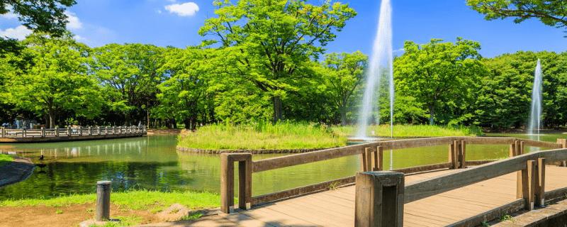 代々木公園_ランニング銭湯