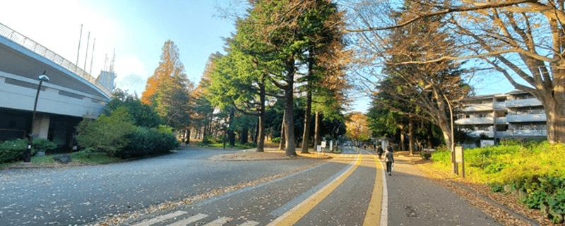 駒沢公園ランニングコース_ランニング銭湯